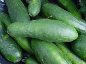 cucumbers-5608